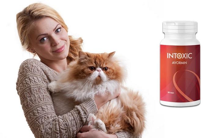 Intoxic dai parassiti: pulizia completa del corpo senza effetti collaterali!